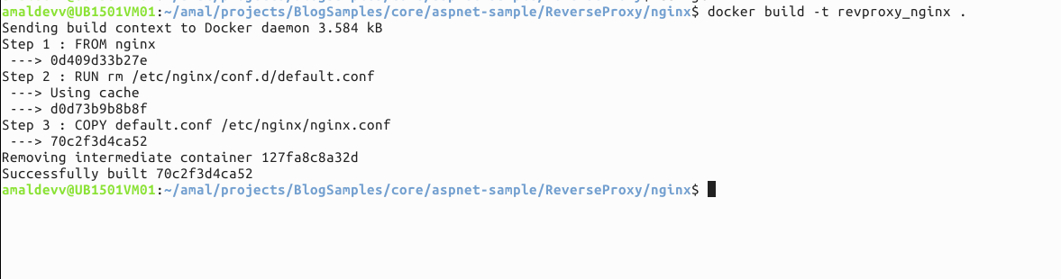 Using Nginx as a Reverse Proxy for ASP NET Core Web App in